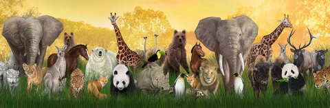 Adam Named the Animals